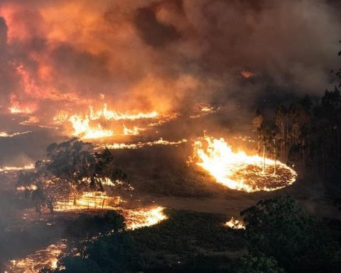 https://www.elespanol.com/mundo/20200101/ascienden-muertos-incendios-australia/456484350_3.html